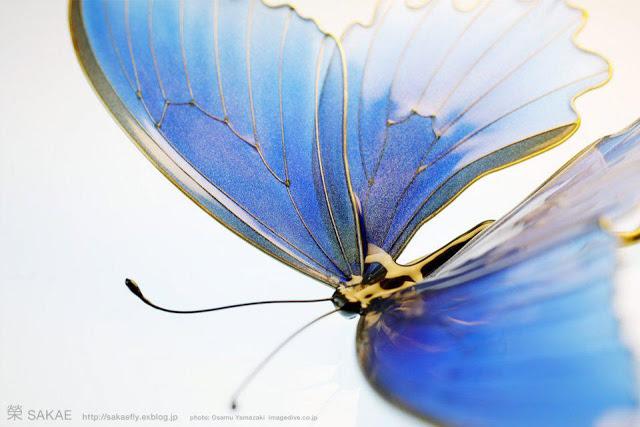 Шпильки с бабочками от Sakae