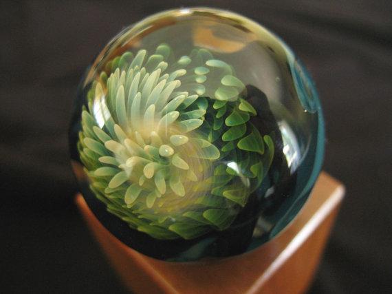 Стеклянный шар, внутри которого раскрывает лепестки нежный фантазийный цветок