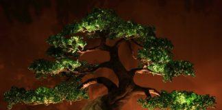 Сказочные светильники от Бисерного друида Дмитрия